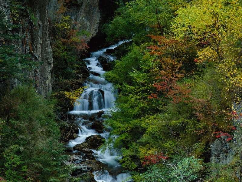 реки фото