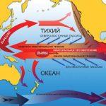 Феномен Эль-Ниньо — опасное тихоокеанское течение