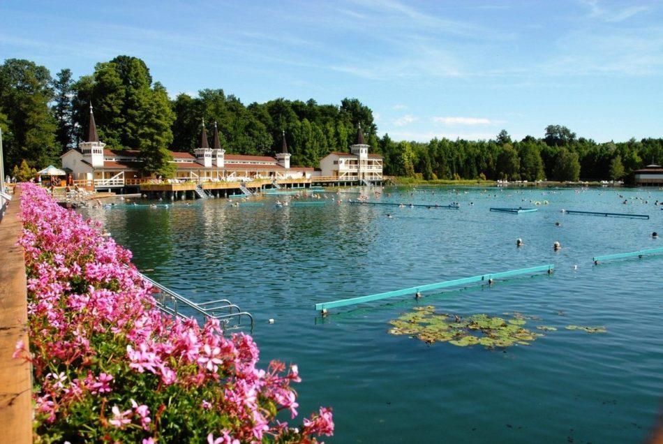 озеро Хевиз Венгрия фото